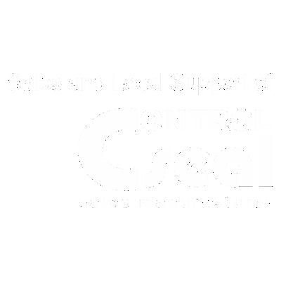 control-logo-slider